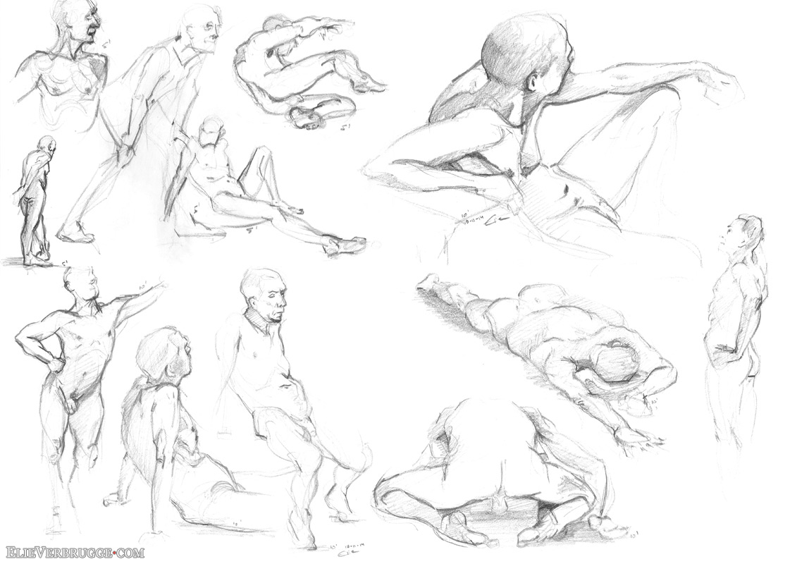 Life drawing and llamas
